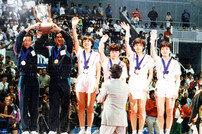 '팀 코리아', 남북 단일팀의 역사