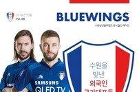 수원삼성, '외국인 국가대표' 특집 블루윙즈 매거진 발행