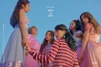 '1월 컴백' 에이핑크, 신곡 무대 단독 콘서트서 최초 공개 [공식]
