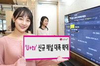 U+tv 37개 채널 추가