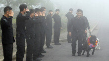 11년차 폭발물탐지견 퀸, '경위'  달고 은퇴