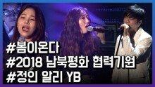 정인·알리·YB … '봄이 온다' 평양 공연