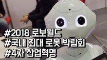 국내 최대 로봇 박람회 '2018 로보월드'