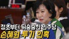 손혜원 차명 부동산 투기 의혹…정초부터 뒤숭숭한 민주당