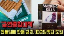 '금연종합대책' 멘톨담배 판매 금지, 표준담뱃갑 도입