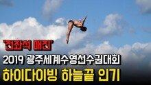 '전좌석 매진' 2019 광주세계수영선수권대회, 하이다이빙 하늘끝 인기