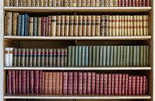 책 팔던 서점이 환경 파괴의 대명사였던 섬을 되살린 사연