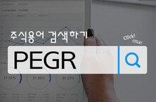 PEGR: PER의 '퀄리티'를 판단하다!