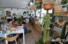 식물 치료해주는 이색 매장 등장... 반려동물 대신 반려식물 인기 이유는?