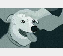 기차역에 버려진 아기, 유기견 무리가 보호…'사람보다 犬가 낫네'