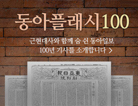 동아플래시100