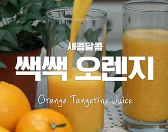 미니오렌지 타르트♥ 비주얼깡패 프랑스디저트