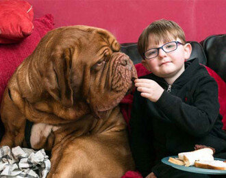 개가 항상 소년의 오른쪽에 앉았던 이유