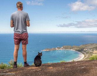 고양이와 여행이 가능할까?