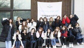 아이즈원-프로미스나인, 새해맞이 유기동물 봉사활동 참여