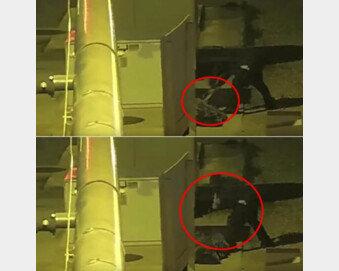 [영상]노숙자 위장 마네킹을 망치로 '퍽퍽'…연쇄살인범, 경찰 덫에 딱?