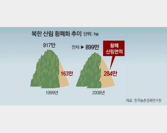 北 산림 상상 이상으로 훼손…복원에 '원전 건설'이 답!