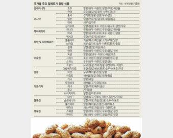 알레르기 유발 식품 나라마다 달라… 한국인 우유-달걀에 취약