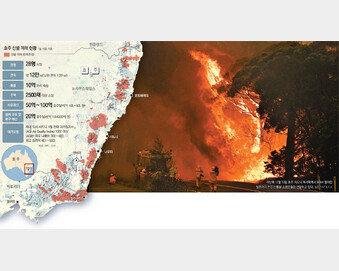 [글로벌 포커스]남한 면적 불타는 호주… 정부 안일 대응 '인재'에 국민들 분노