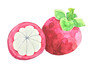 [투어팁스] 골라 먹자, 동남아 열대 과일