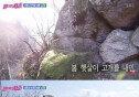 """""""민주주의는 위대하다""""…  SBS 예능의 메시지, '감동+뭉클'"""