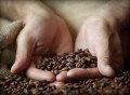 우주서 커피콩 떨어뜨려…대기권 열로 볶은 커피 '50만 원'