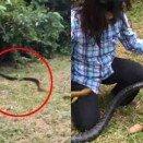 맨손으로 거대 뱀 잡은 간큰 여성 SNS서 화제만발!