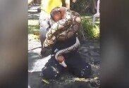 안전 교육하던 소방관, 몸에 뱀 감겨… 아찔한 사고