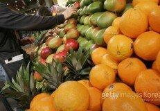 """""""과일·채소, 많이 섭취하면 행복감 커져"""""""