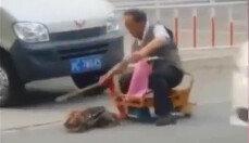애완견 무참히 폭행한 남성…이유가 '황당'