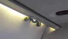날고 있는 여객기 안에 나타난 '독사'…어떻게 기내에?