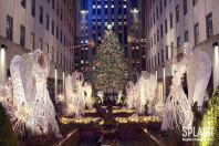 전구 5만개 들여서… 뉴욕의 크리스마스 트리