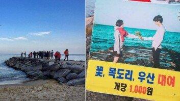 """""""드라마 소품, 1000원에 대여""""… '도깨비' 촬영지, 인증샷 열풍"""