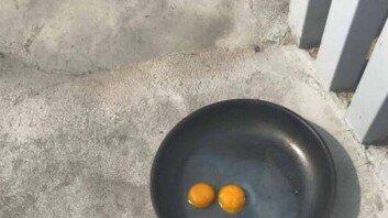 """""""가스레인지 필요없네""""… '대프리카' 폭염에 완성된 계란후라이"""