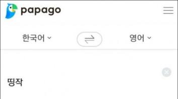 """""""급식체도 번역하는 클라스""""… 파파고 초월 번역 '눈길'"""