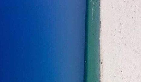 """""""문일까, 바다일까""""…착시 사진에 '의견 분분'"""