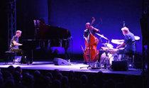 """""""歐洲爵士樂音樂節""""將于下月1 ~ 3日在首爾麻浦藝術中心舉行"""