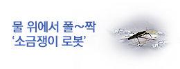 1438308338_news_banner_image_2.jpg