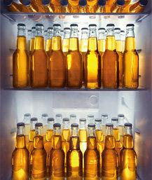 술 품은 냉장고