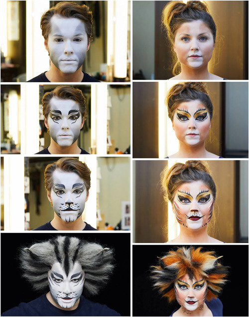 Brushing and combing carefully makes actors look like real cats