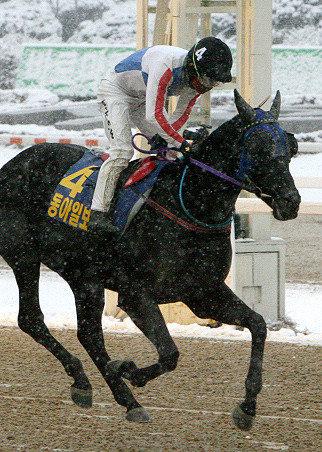 果川のクイーン、初の2年連続優勝馬の誕生はなるか