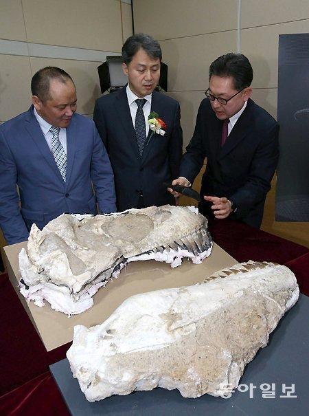 韓国に密輸された恐竜化石11点、モンゴルに返還