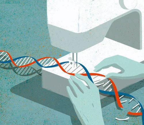 「知れば知るほど遺伝子治療を支持」 米教授がゲノム編集技術の認識調査