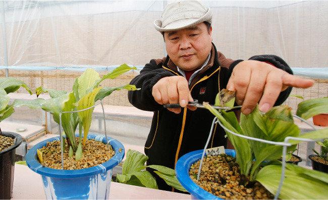 충남 청양 고운식물원