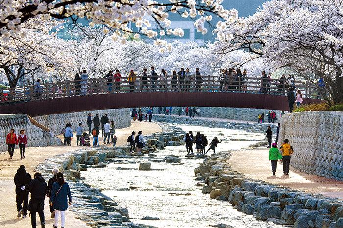 숨은 맑은 도시, 경북 구미