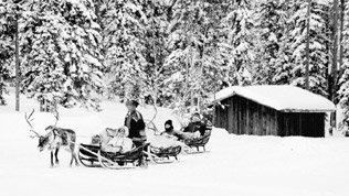 위기의 대한민국, '强小國' 핀란드에서 무엇을 배울 것인가