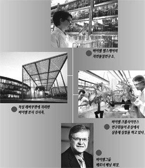 바이엘|전방위 구조조정으로 거듭나는 '화학 만물상'