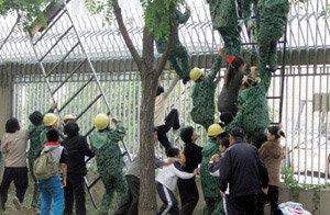 제3국 관련법 통해 본 美 북한인권법의 진실