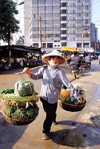 시간마다 옷 바꿔 입는 바위들의 숲 베트남 하롱베이