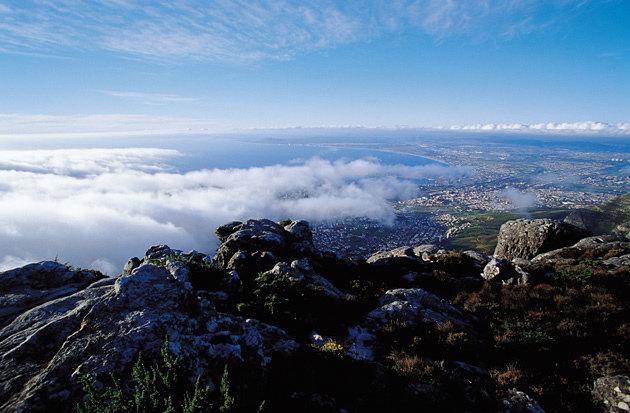 검은 대륙 남쪽 끝에서 즐기는 상큼한 와인 온천욕|남아프리카 케이프타운